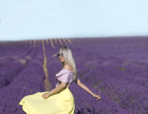 CHASING PROVENCE LAVENDERS IN AUGUST